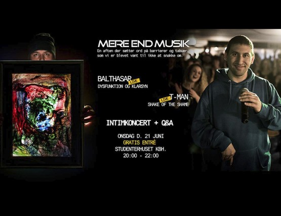 Mere end musik web cover